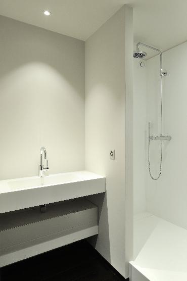 Salle de bains : vasque et douche