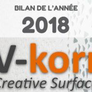 [Infographie] Le bilan de l'année 2018 pour V-korr